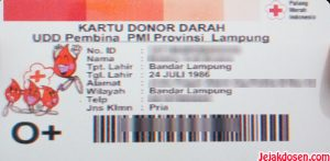Syarat dan Manfaat donor darah di PMI Bandar Lampung