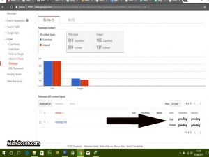 Submitted dan Indexed Pending di google webmaster